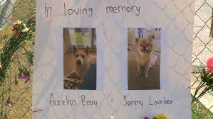 Fire At Texas Pet-Boarding Center Kills All 75 Dogs